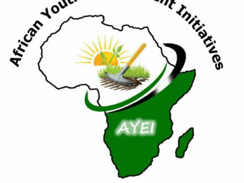 FUNVIC EUROPE in aid of AYEI